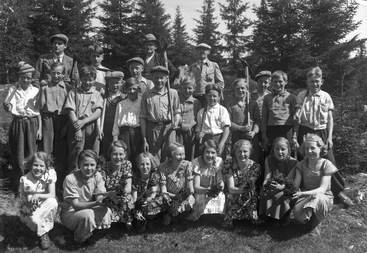 Ungdom på skogplanting.