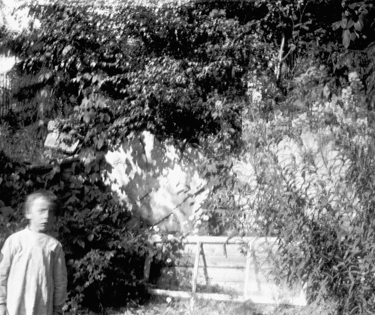 Fra Madeira (ant.), uklart naturmotiv med et barn t.v. Serie ant. fra reise tilbake dit fotografen var med sin mor som barn og hvor moren døde 1863. Fra malerinne Juliane Fredrikke Langbergs samling, tatt 1895-1910 med motivkrets slekt og venner samt steder tilknyttet samvær med disse.