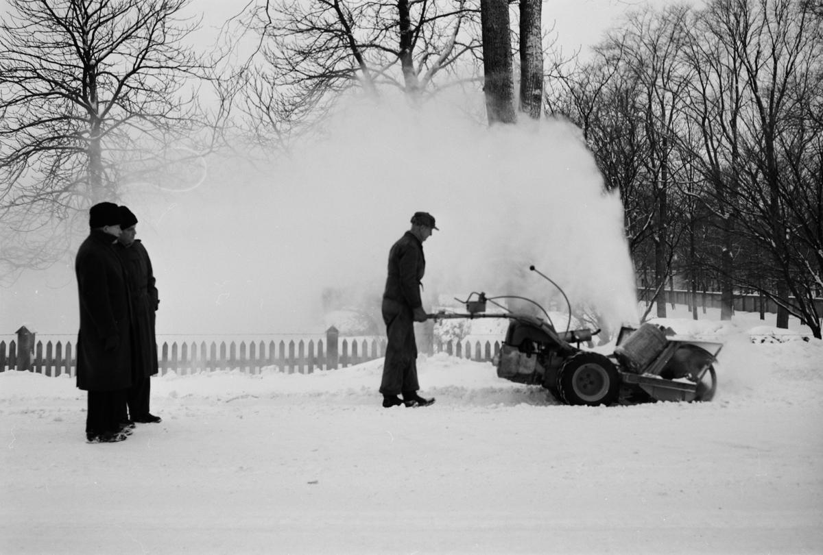 Vinter - snöslunga, sannolikt Uppsala 1953