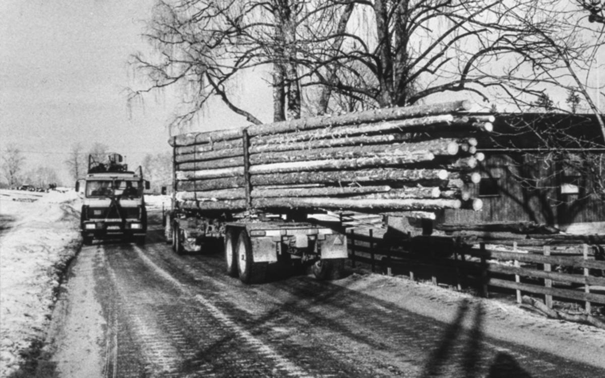 Kjøring av tømmer med bil.