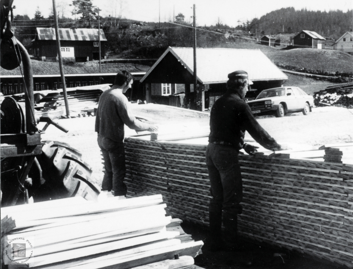 Janog Kjell Egil stabler stav på Leland. Grindheim Audnedal.