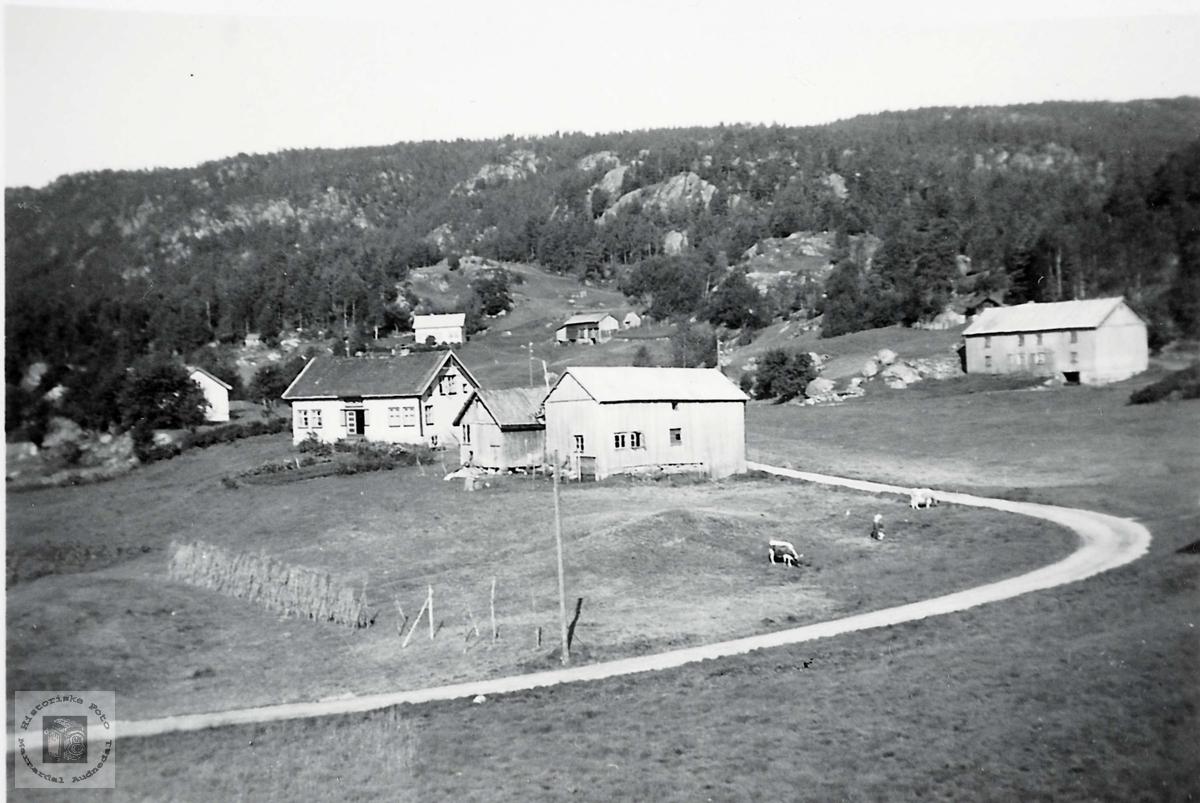 """Gamlehusene på """"Langåkeren"""" på Håland i Grindheim. Audnedal."""
