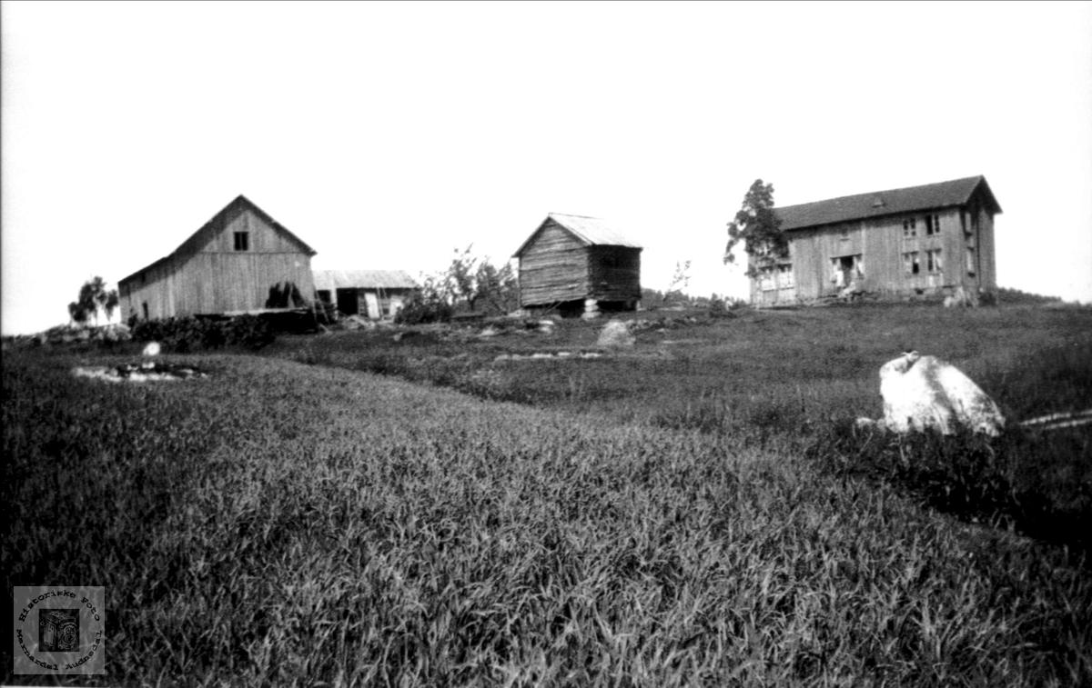 Gammelt bilde fra Bjerland i Bjelland.