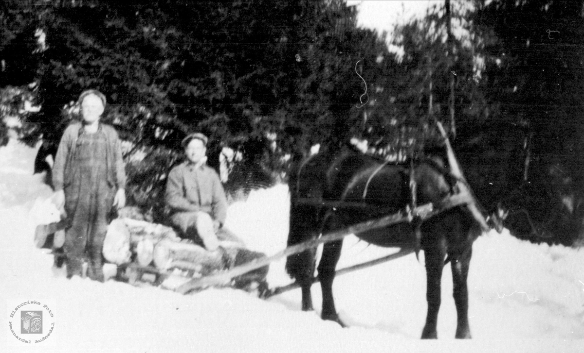 Kjøring på vinterføre i skogen på Ågset, Laudal.
