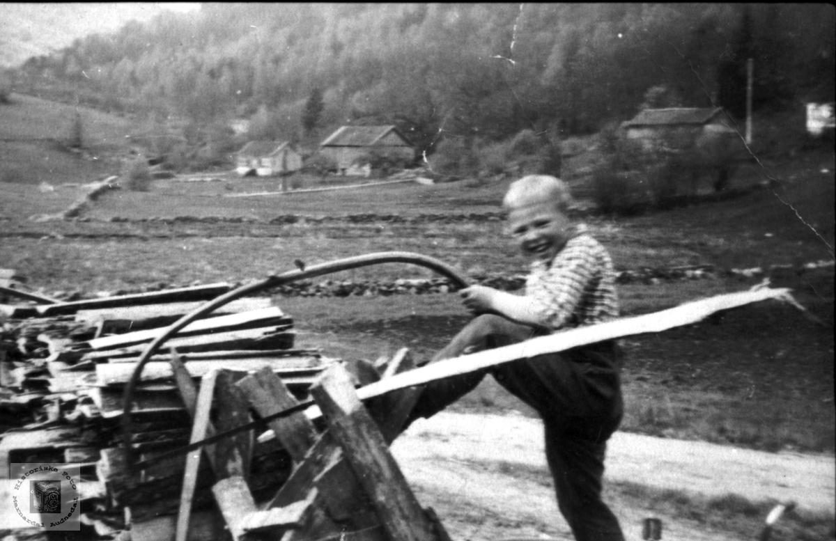 Vedsaging. Dagfinn Skuland, Laudal.