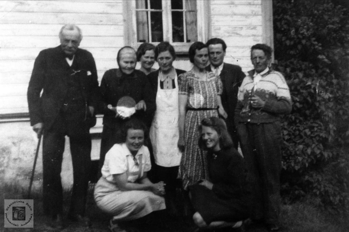 Familiegruppe Brunvatne Vigemyr, Øyslebø.