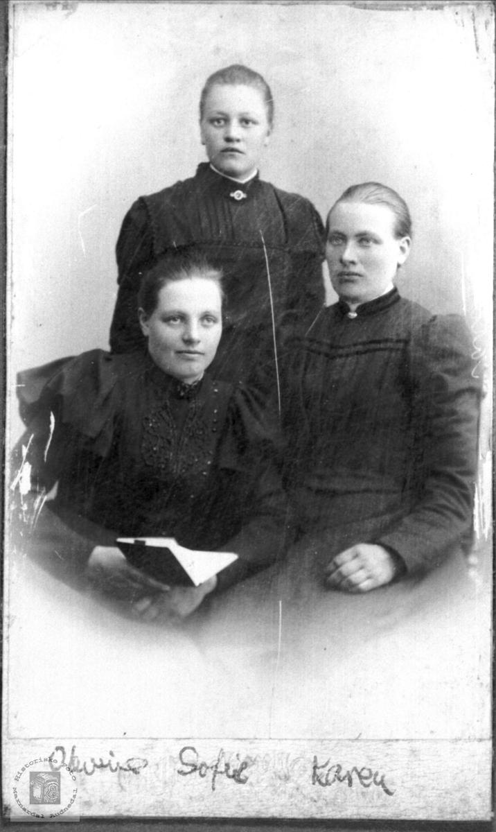 Trippelportrett av jentene Bruskeland