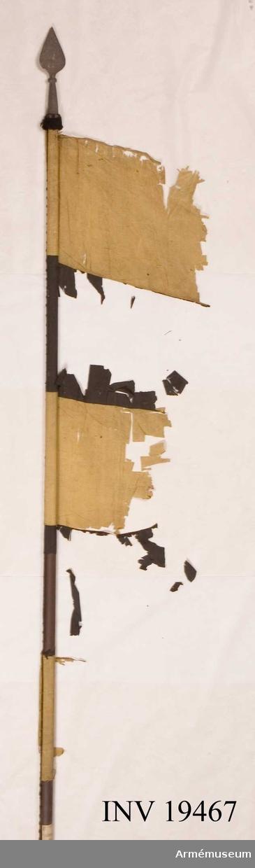Fanrester. Tidigare fanns fanresterna i Statens trofésamling. Längden på fanstången med spetsen är 2515 mm. Fanan var tillverkad 1675 av Baltzar Friedrich och är av siden med omväxlande gula och svarta våder. Endast rester längs stången återstår. Längs stången ett kypertvävt band, bredd ca 10 mm. Inget motiv synligt på fanan. I konserveringspärmen finns två små fragment. Ytterligare information finns i artikeln Älvsborgs regementes fanor under fem sekler, författare Leif Törnquist. Se teckning i konserveringspärm nr 8, utförd av Anita Andersson.  Samhörande nr AM 19466-19467.
