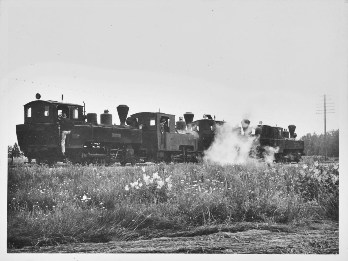 Fire av Urskog-Hølandsbanens damplokomotiver er trukket ut på linjen for fotografering.