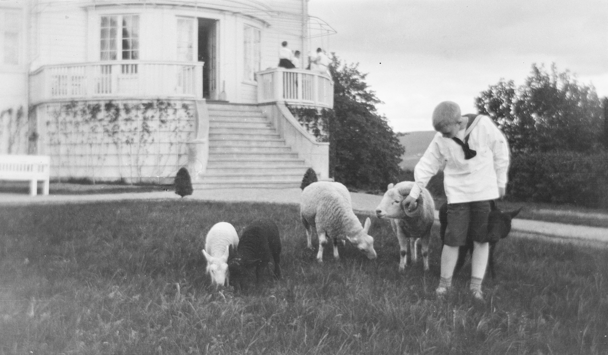 """Bildet er tatt i den Viktorianske hagen foran hovedhuset på Linderud Gård. I front står  Iacob Ihlen Mathiesen sammen med en """"liten sauefamilie"""". Gutten holder i hornet på en liten vær. En hvit søye og to lam, ett sort og ett hvitt, gresser fredelig. En sort søye stryker seg langs bena på gutten bakfra. I bakgrunnen sees hovedhuset og verandaen hvor en liten gruppe er samlet."""