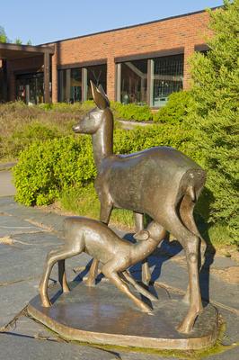 Skulptur av rådyr ved inngangen til Norsk Skogmuseum. Foto/Photo