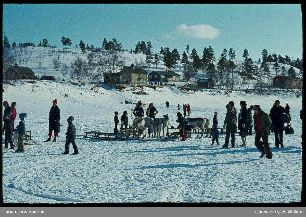 Karasjok i 1972. Reinkappkjøring i påska.