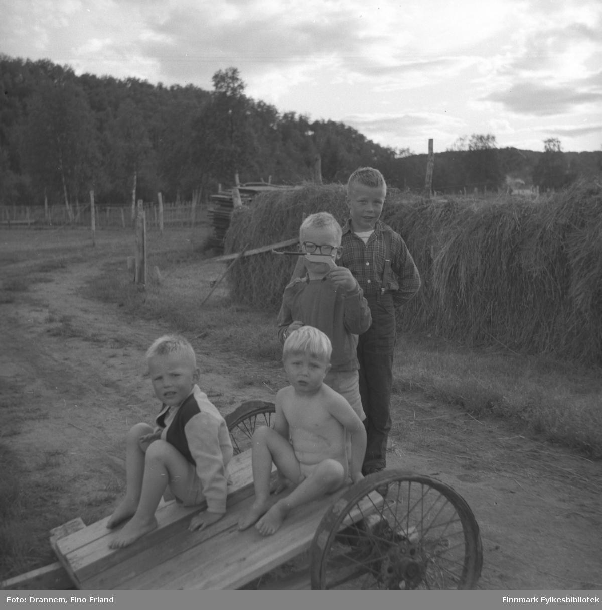 Fire små gutter fototgrafert på en gårdsvei. Dette kan være sønner av Alfred Karikoski.
