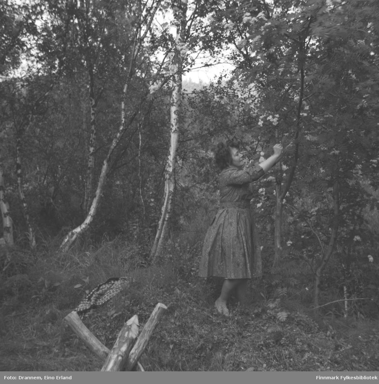 Jenny Drannem fotografert i skogen. Stedet kan være Neiden