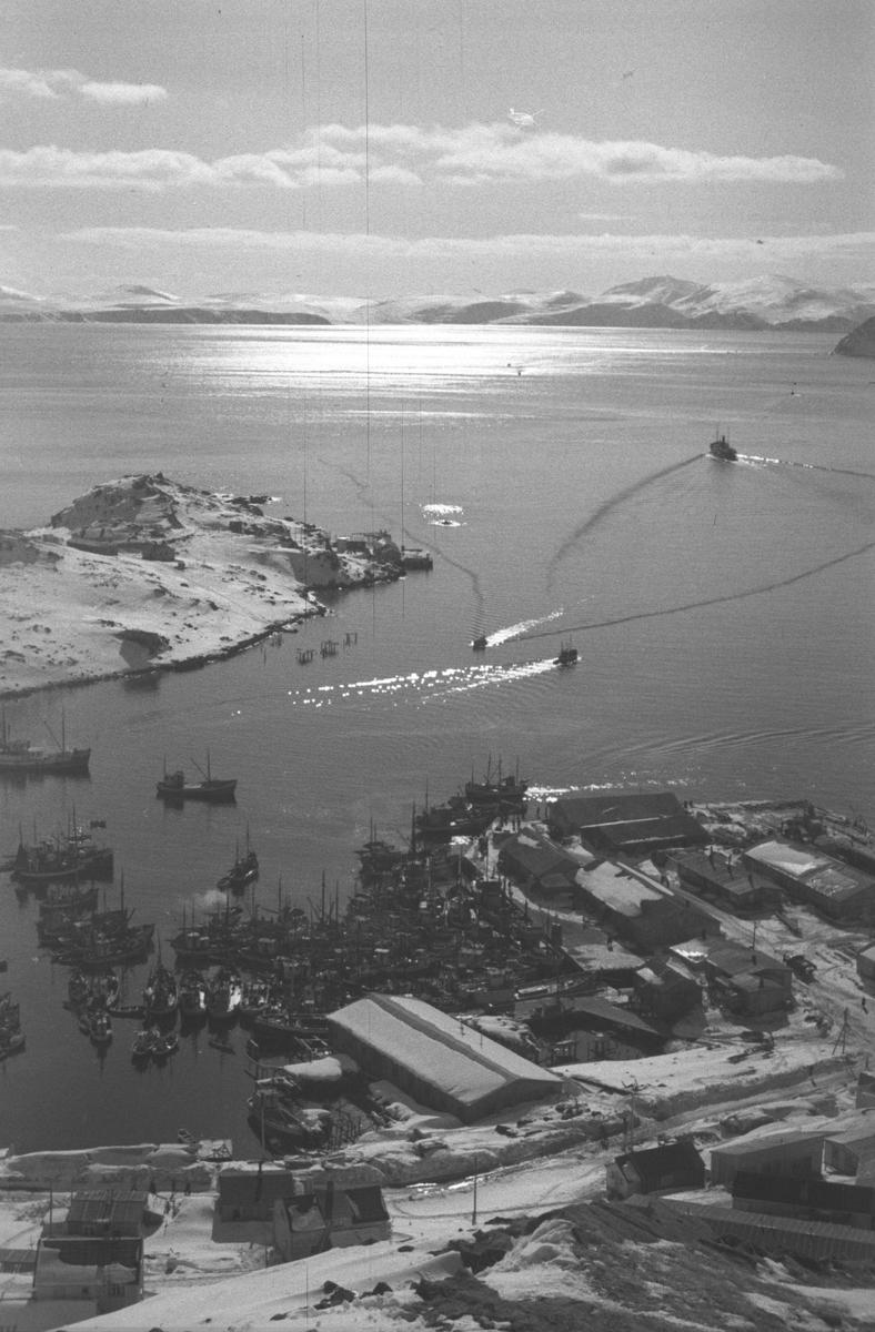 Gjenreisning. Honningsvåg. Oversiktsbilde over indre havn med mange fiskebåter og brakkebebygelsen på Holmen. 1946/47.