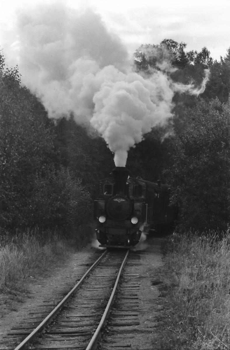 Damplokomotiv nr. 4 Setskogen for full damp oppover 20 promille stigning fra Bingsfoss på museumsjernbanen Urskog-Hølandsbanen, Tertitten.