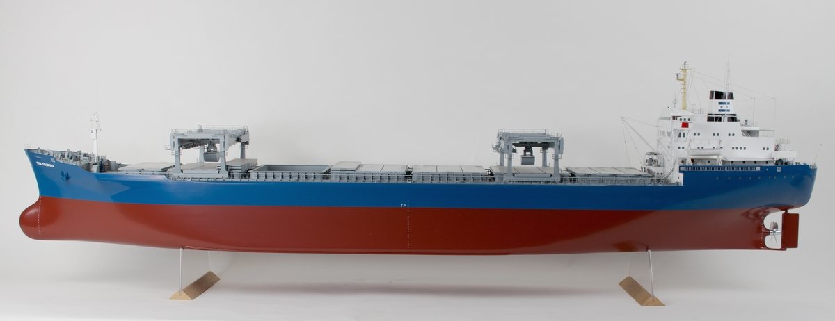MS STAR COLOMBIA