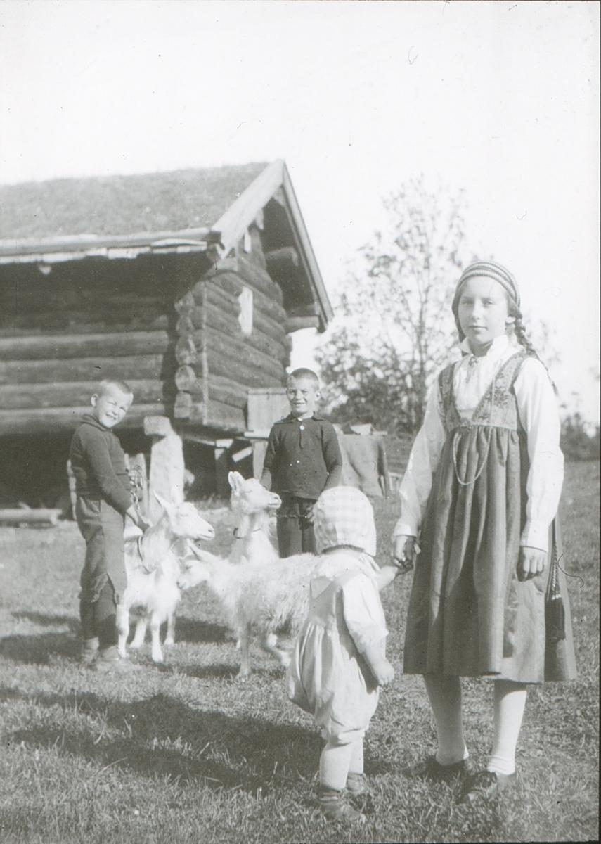 Friluftsskolebarn og geiter. Lite barn - Kari Garborg - med ryggen til kameraet.