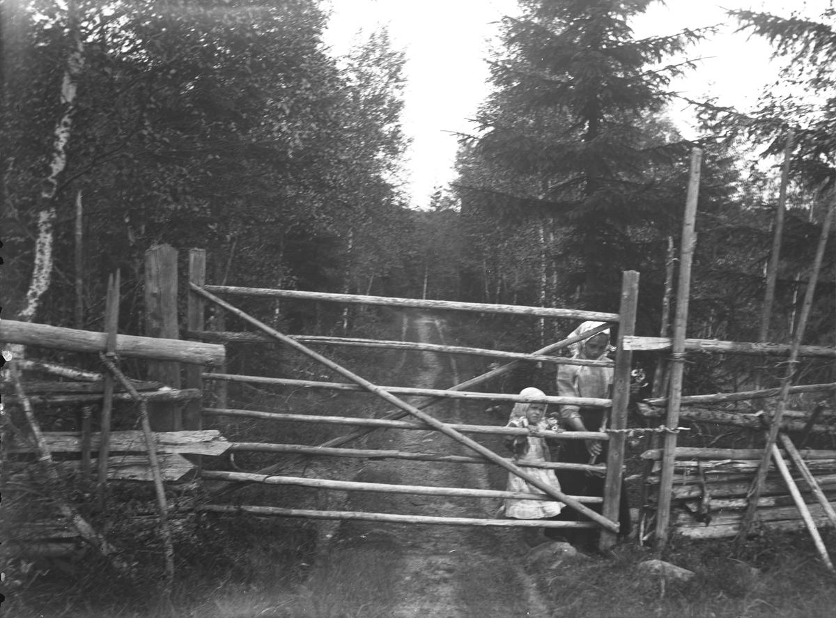 """""""Värmland. Jösse hd. Mangskog sn.Bjurbäcken. Grind. En vidja är fästad vid hitre stören närmast grinden. I andra ändan af vidjan sitter en käpp, med hvilken grinden stänges."""""""