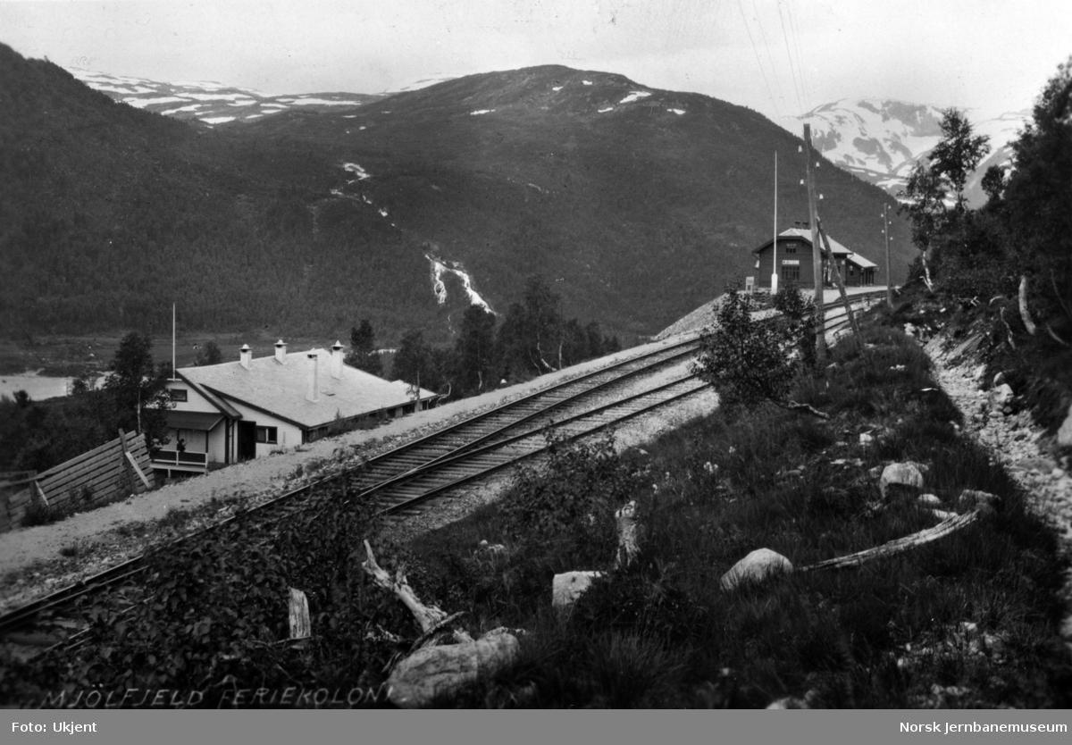Mjølfjell stasjon, sett fra innkjør østfra