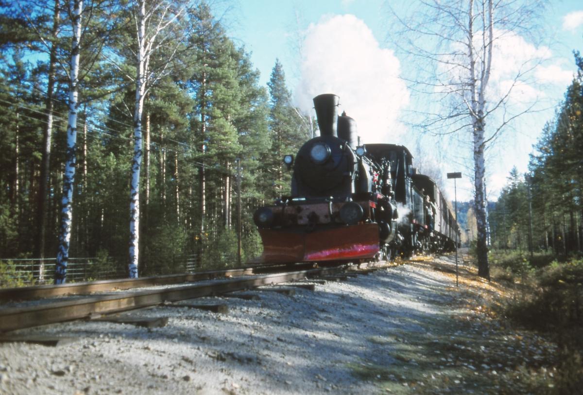 Veterantog til Krøderen trukket av damplok 21b nr. 252.