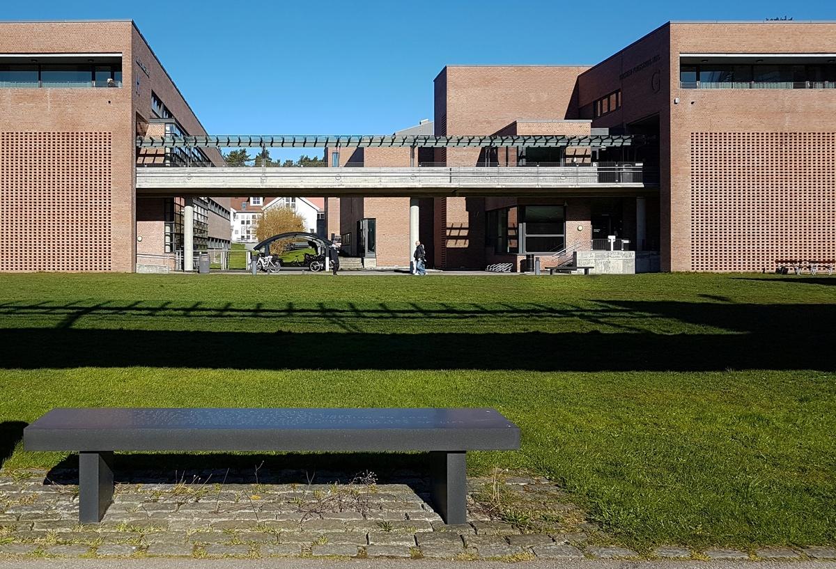 Verket består av 12 benker utendørs med tekst fra «Truisms» (1977-79), og inngår i utsmykking som også omfatter én innendørs benk i vrimlehallen samt ett piknikbord på campus. Benkene skal fungere både som et møbel og en forlengelse av den arkitektoniske ramme for campus, samtidig som de er et medium for kunstnerens tekster.  I relasjonen mellom granittbenkenes anonymitet og tekstene som trer frem blir installasjonen mer enn kun en innredning på den ene siden og ideer på den andre. Sammen skaper de poesi. Det uttrykksbærende element i installasjonen er kontrasten mellom tekstenes særegne intensitet som dannes i møte med den kalde sorte granitten.