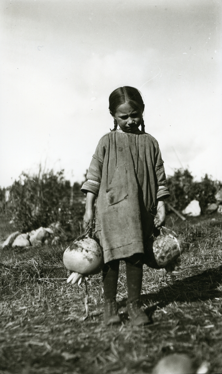 Jente, Maalfrid Galaasen (21/2 1914), stående med en turnips i hver hånd i Galåsen.