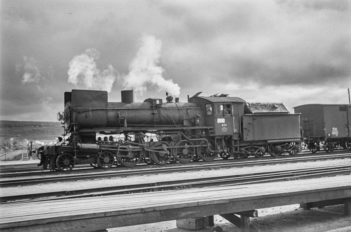 Damplokomotiv type 26b nr. 229 i sydgående godstog på Røros stasjon.