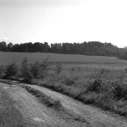 Herrestad socken. Fröland. Stenåldersboplats 21a och b. Sedd