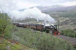 Ekstratog med damplokomotiv 26c 411 mellom Kongsvoll og Hjer