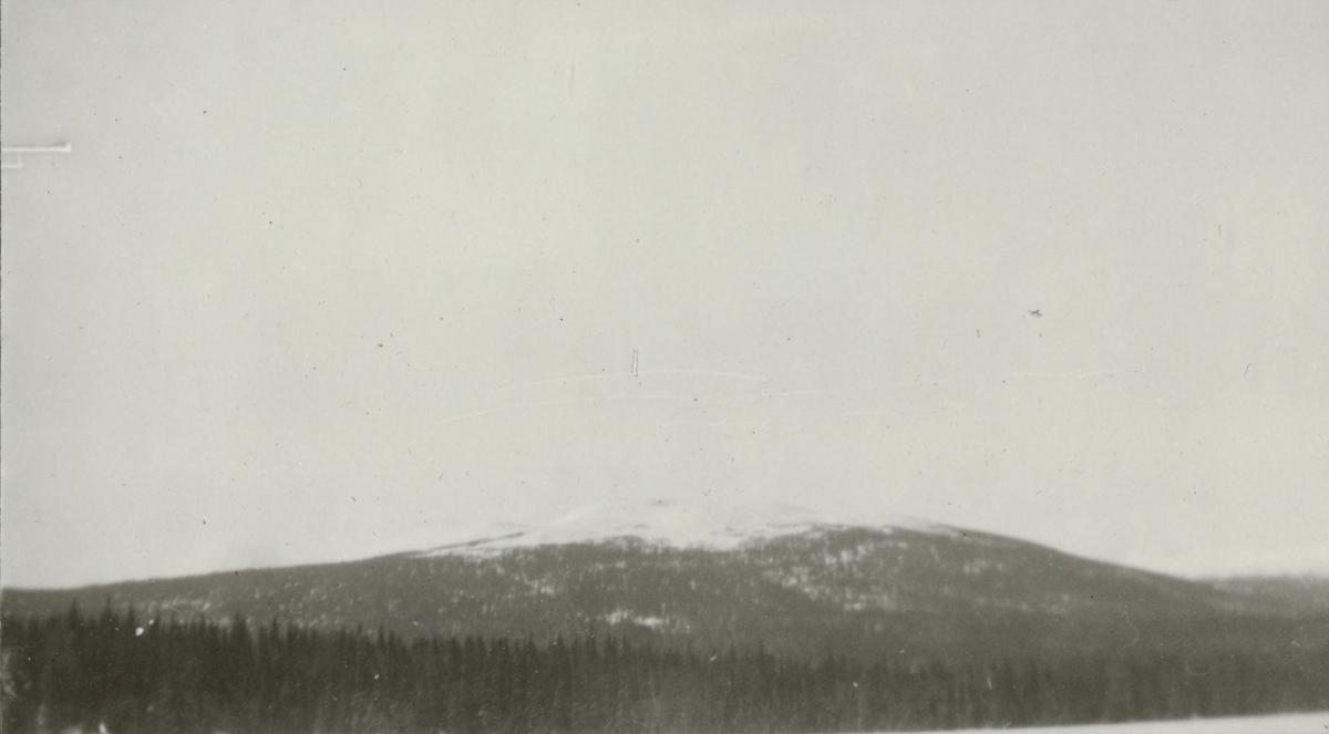 Officersövningar i Hålland 10-18.3.1931. Naturbild.