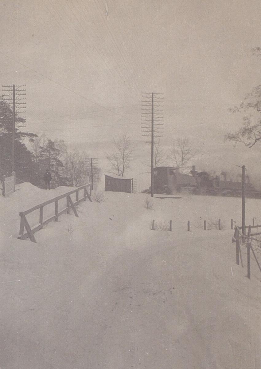 Telefonnät i Stockholmstrakten omkring sekelskiftet 1900.