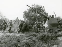 40 mm fältautomatpjäs m/48. Grupperad