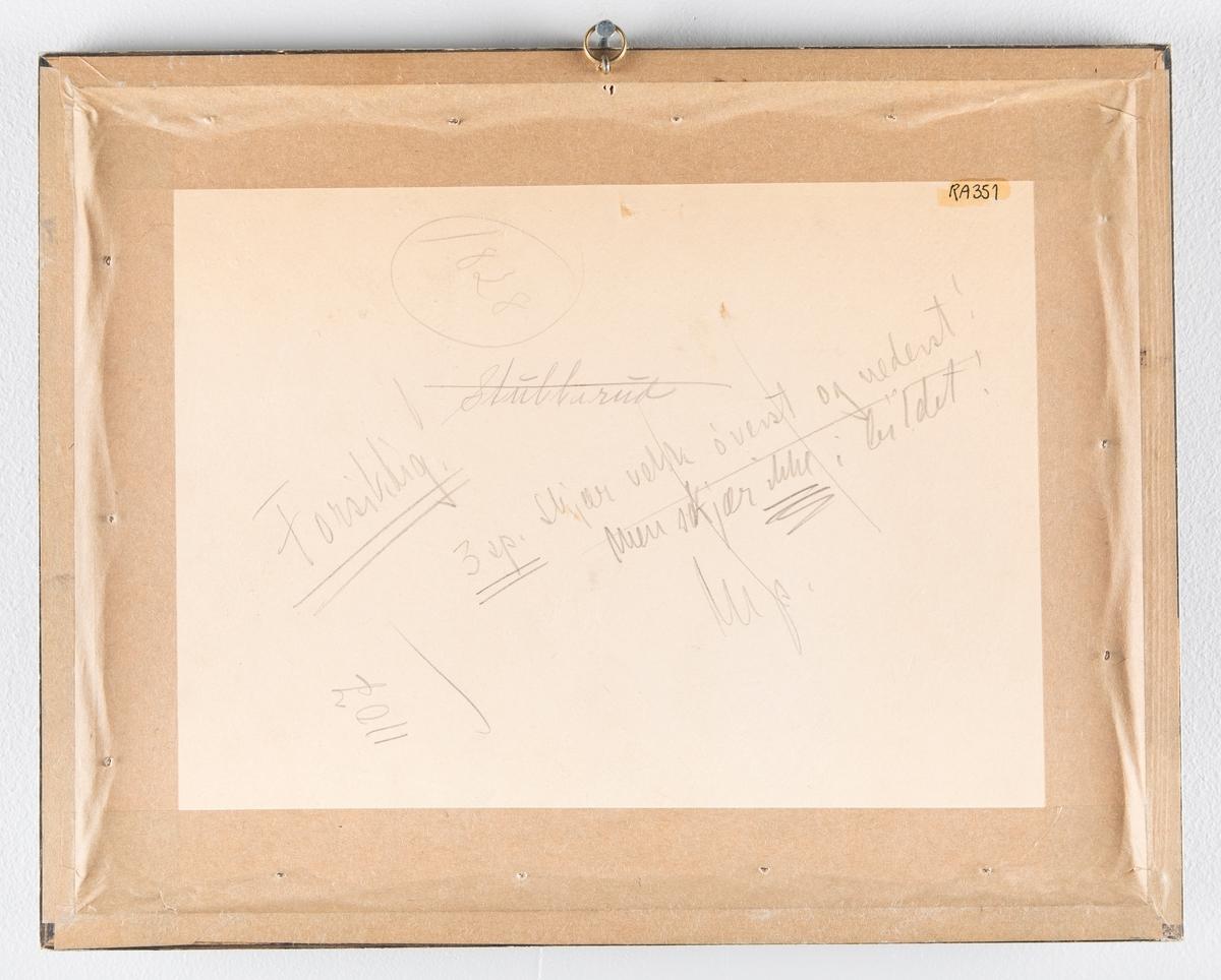 Gruppebilde av overvintringen i Framheim 1911