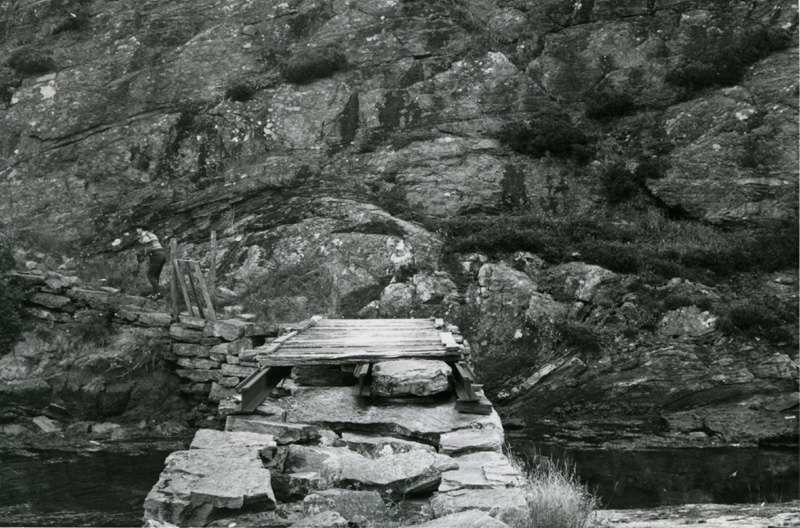 En liten bro. Synfaring til østersoppdrett