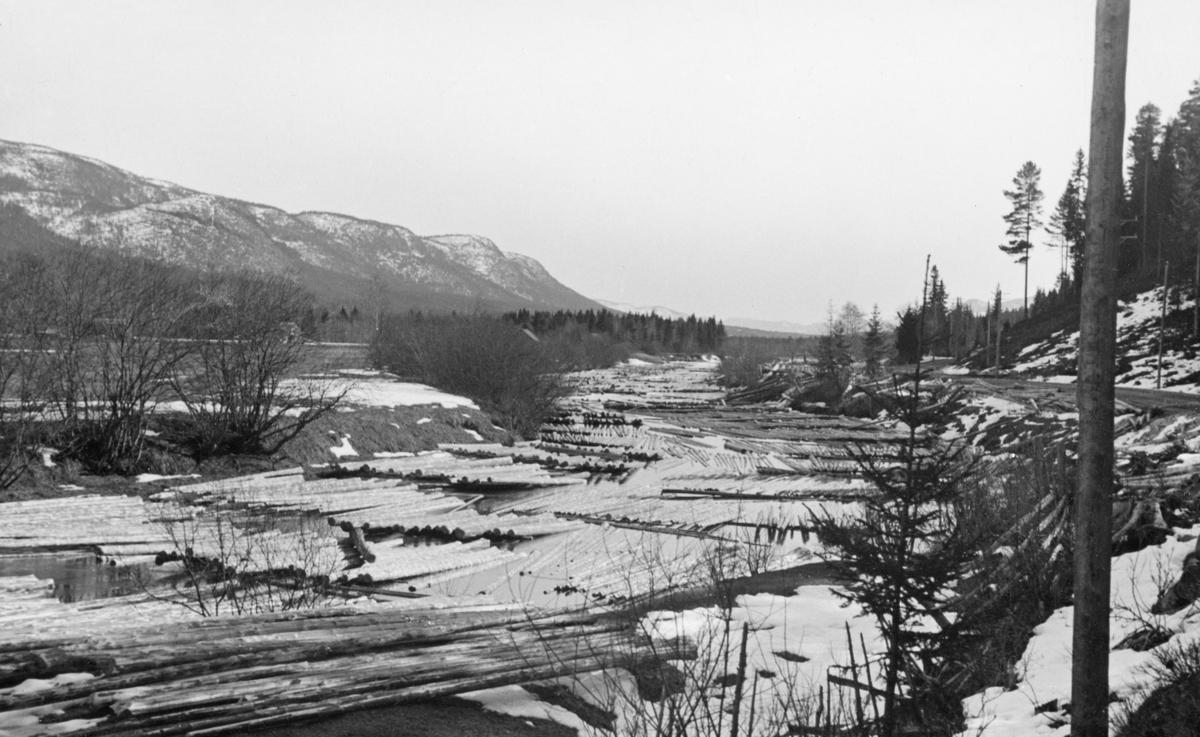 """Vårbilde fra Rena-elva i Øvre Rendalen.  Fotografiet viser hvordan mye av fløtingstømmeret ble lagt i florer med lengderetningen paralelt med strømretningen.  På opptakstidspunktet var snøen og isen i ferd med å smelte, men virket lå fortsatt slik det var opplagt for """"annamming"""".  I forgrunnen ligger også enkelte stokker på land. Til høyre på bildet ses en skrånende elvebredd med gran- og furuskog.  Til venstre ei flat engslette med ei utløe i det fjerne.  Lengre bak en litt glissent skogkledd ås. Øvre Rena."""