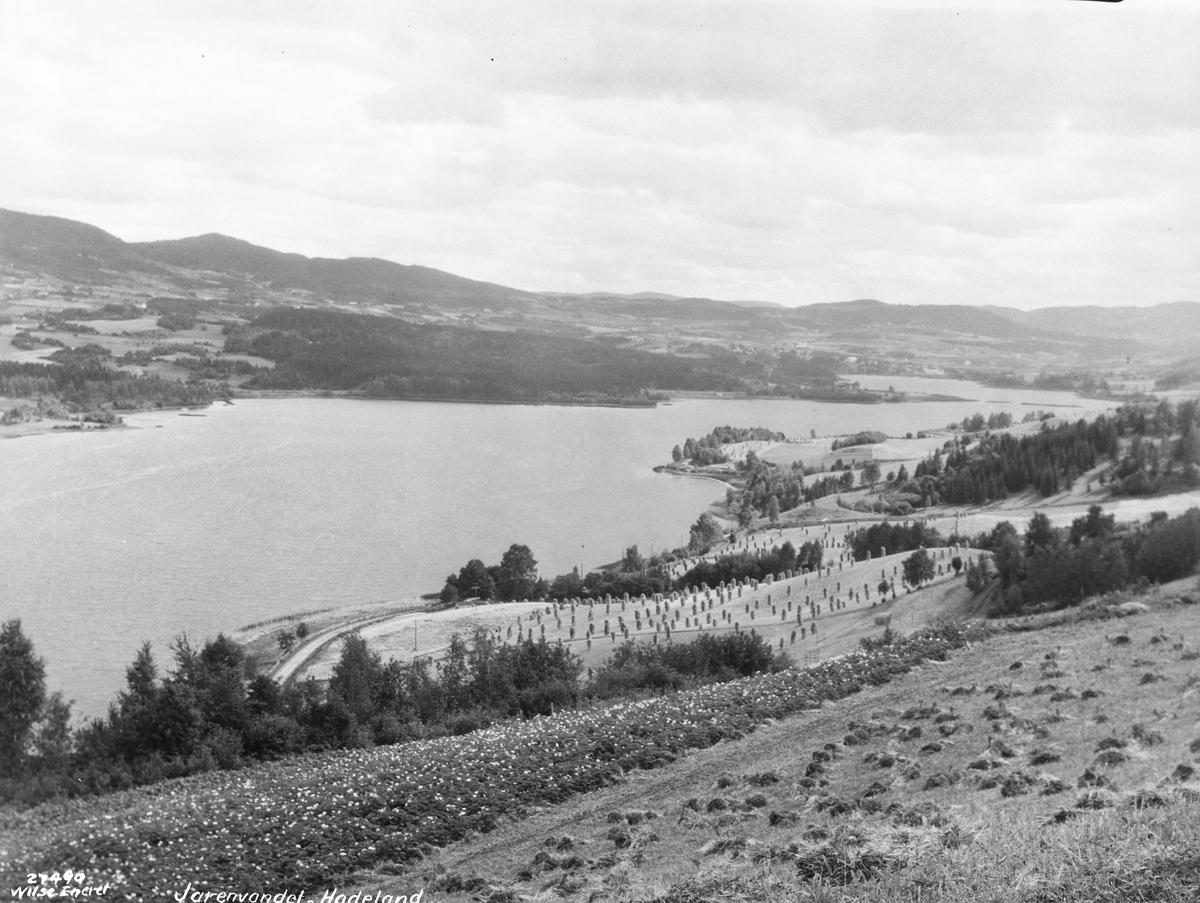 Prot: Hadeland - Jarenvandet