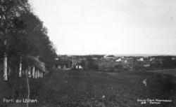 Parti av Løiten. Løten. Landskap, bebyggelse. Postkort 318.