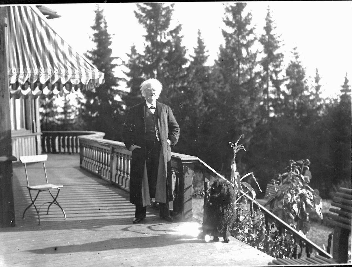Bjørnson, veranda, hund, stol,
