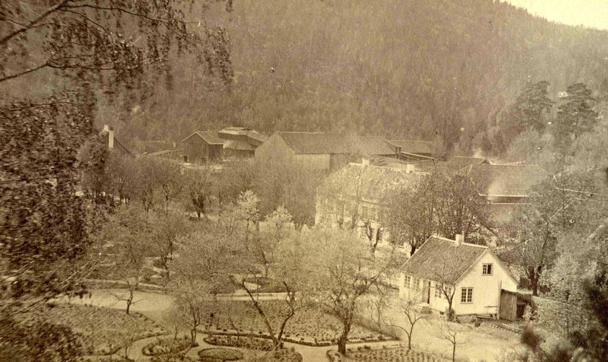 Fra John Ditlef Fürst fotoalbum. Frolands Jernverk - Parken og gartnerboligen. Foto nr 117 -  AAks 44 - 4 - 7
