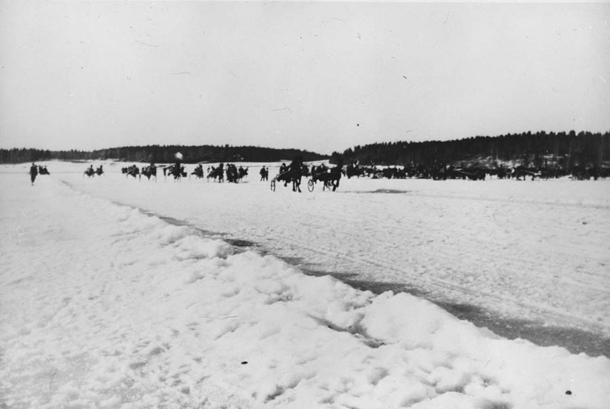 Travløp på isen. Hester, vogner, sne, skog