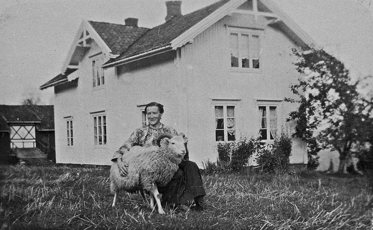 Kvinne og en sau på et gårdsbruk.