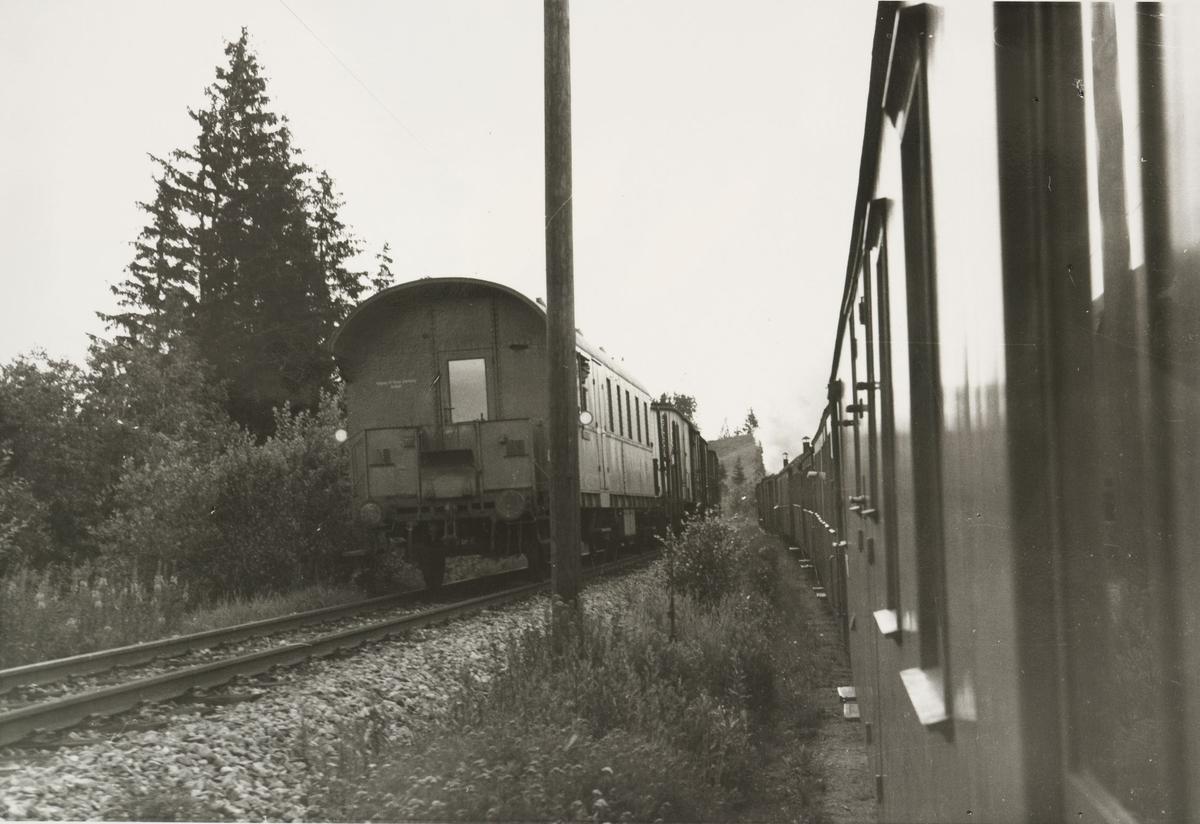 Tertitten og godstog på Kongsvingerbanen kjører parallelt.