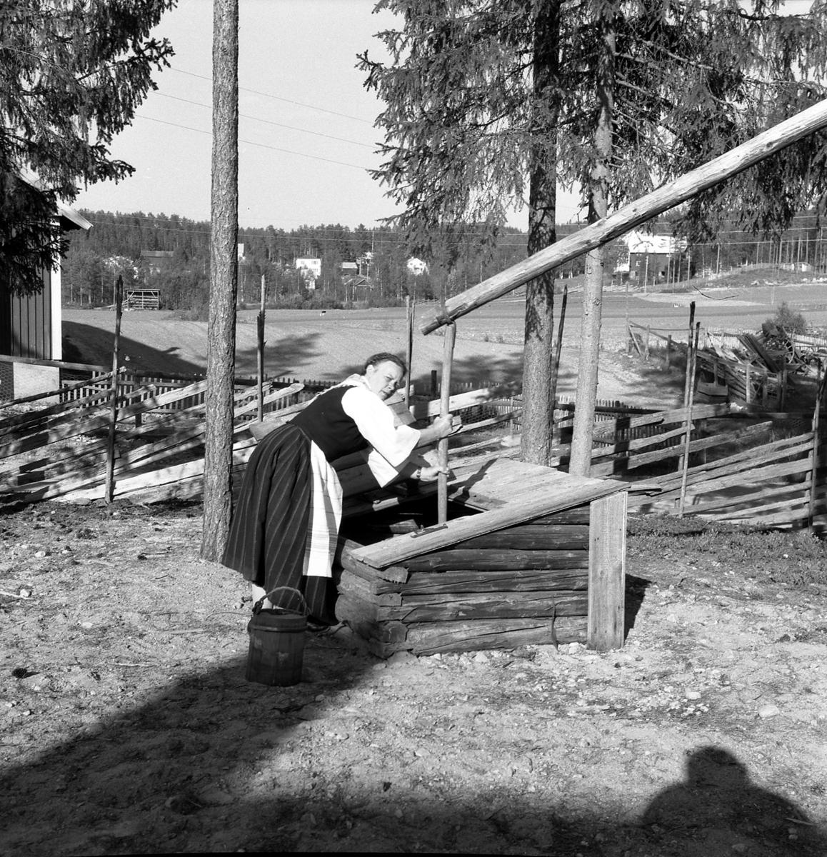 Åsta Holth