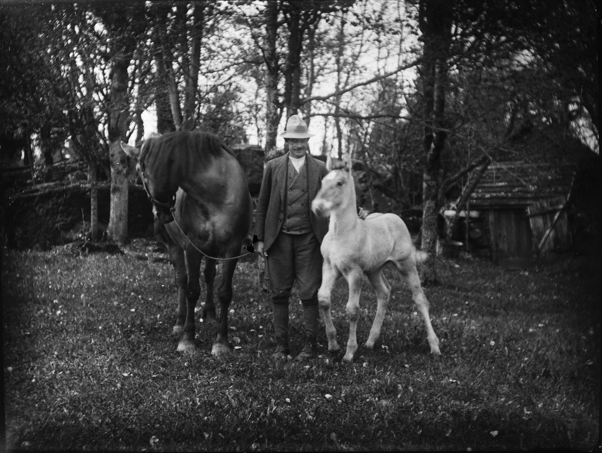 Man med häst och föl, Uppland