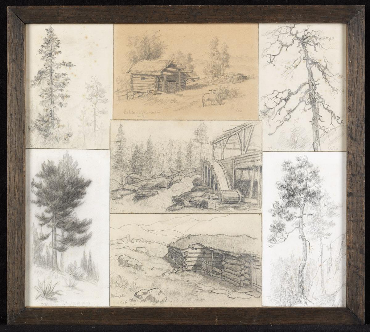 """Ned.tilv. nåletre, skr.""""O.V.1900?, Italiensk pinje""""; fjell-landsk. m. lavt tømmerhus, skr.""""Otto V.1900, Myndingseter""""; furu, skr.""""Furu, O.V.20""""; i midten oppgangsag, skog, skr.""""O.V.1900, Kleven""""; øv.tilv. gran, skr.""""O.V. 26, Gran""""; landsk. m. tømmerhus, 2 sauer, skr.""""Badstue i Tele- marken-92""""; del av dødt tre, skr. """"tørrfuru, O.V.11"""""""