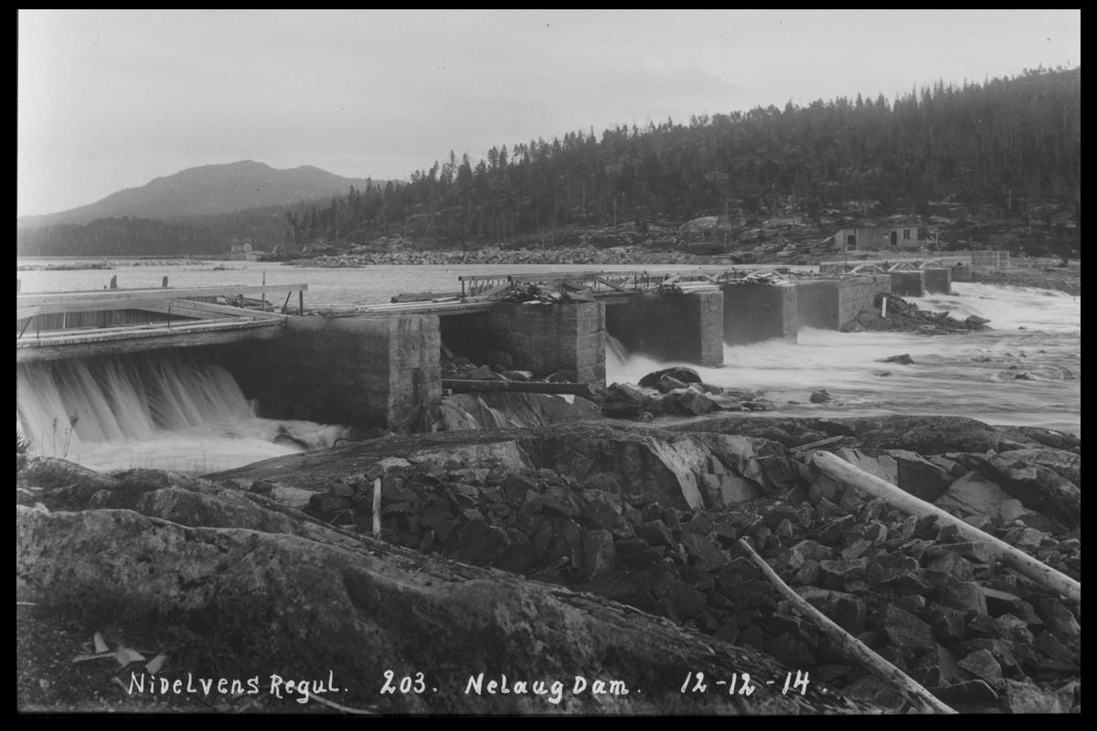 Arendal Fossekompani i begynnelsen av 1900-tallet CD merket 0474, Bilde: 66 Sted: Nelaug Beskrivelse: Damanlegget