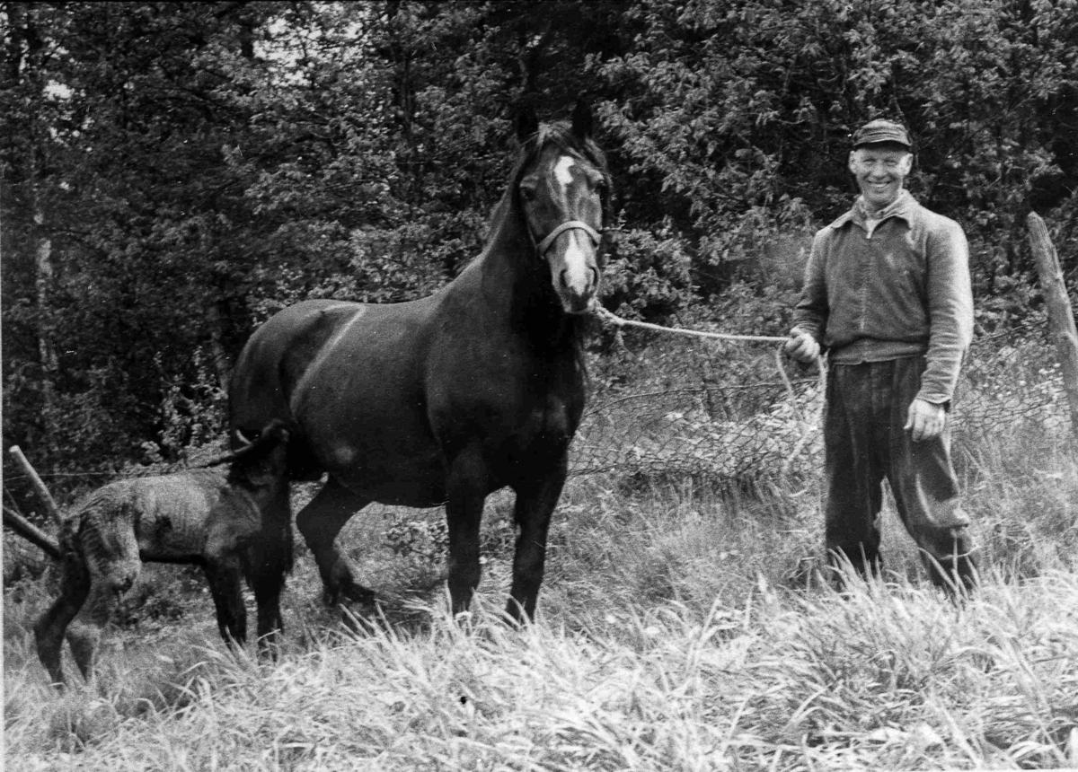 Bilder fra Birkenes kommune Gunleif Gundersen ca 1962
