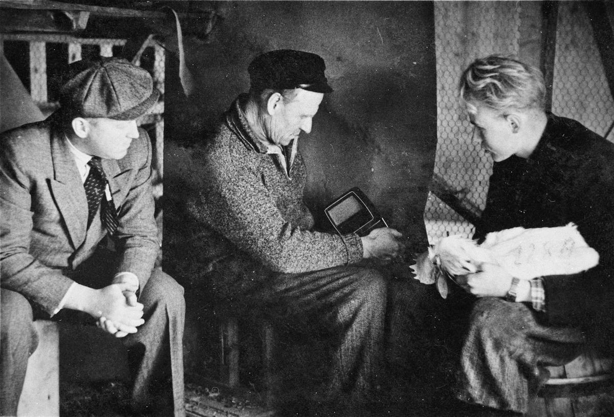 Asmund Sundt: radioforhandler og spesialist på radio. Hans Vilberg, Guttorm Arntsen. Bildet er tatt mot slutten av krigen. Radioen var skjult i Hønseriet på Øvre Vilberg.